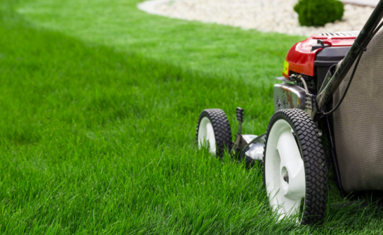 Lawn Care Knoxville with Landscape Service TN